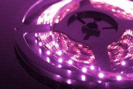 3528 Led Strip Pink DC12v 5mtr